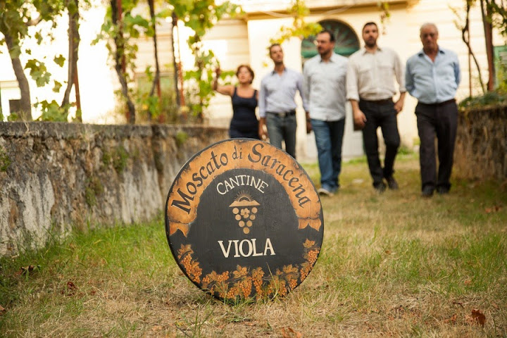 Cantina Viola